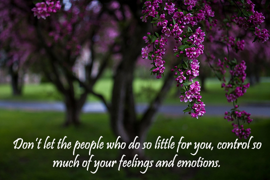 Your Feelings and Emotions - 8-25-2013