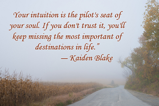 Intuition - 11-2013