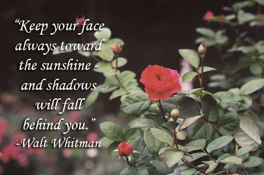 Keep Your Face Toward the Sunshine - 12-2013