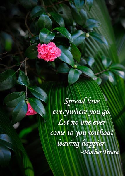 Spread Love - 4-8-2014