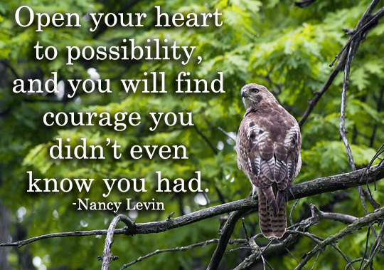 Courage - 5-27-2014